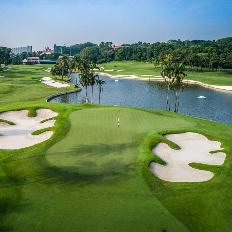 Discounted Golf Rounds for...